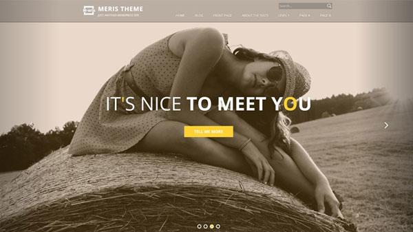 free-wordpress-theme-Meris