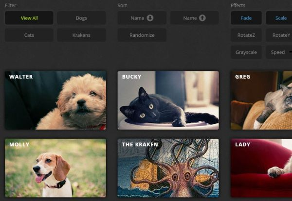 free css and jQuery filter plugin